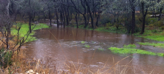 Plum Creek Watershed Protection Plan